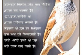 021 Essay Example On Love For Animals In Fascinating Hindi Towards And Birds 320