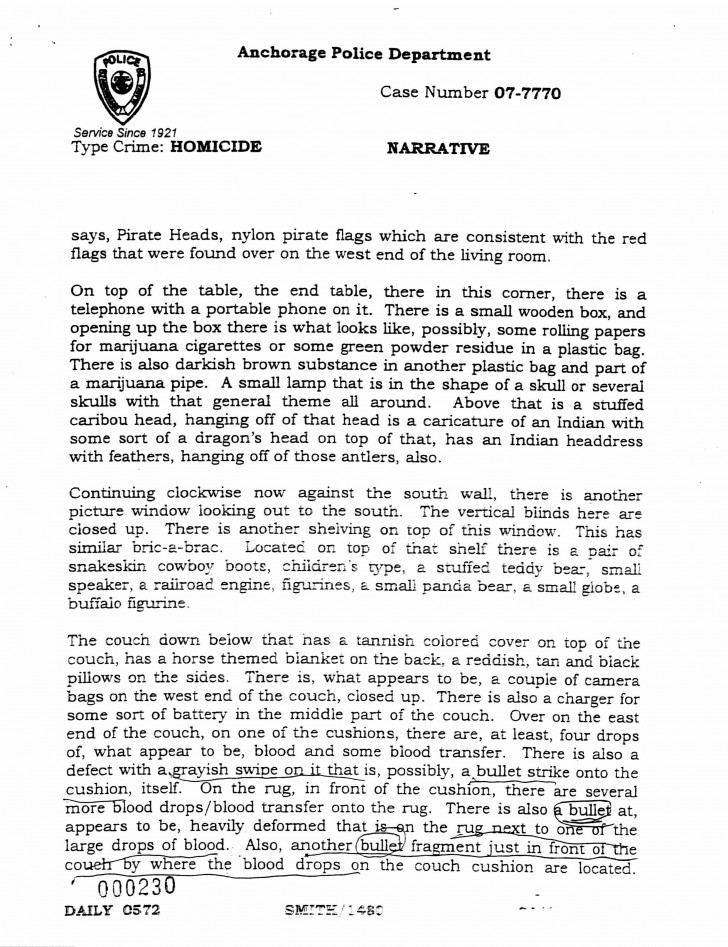 021 Essay Example Police Report Daily Narrative Of Imposing A Introduction Format About Love 728
