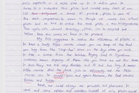 021 Essay Example Satire Fearsome Essays About High School Examples On Gun Control