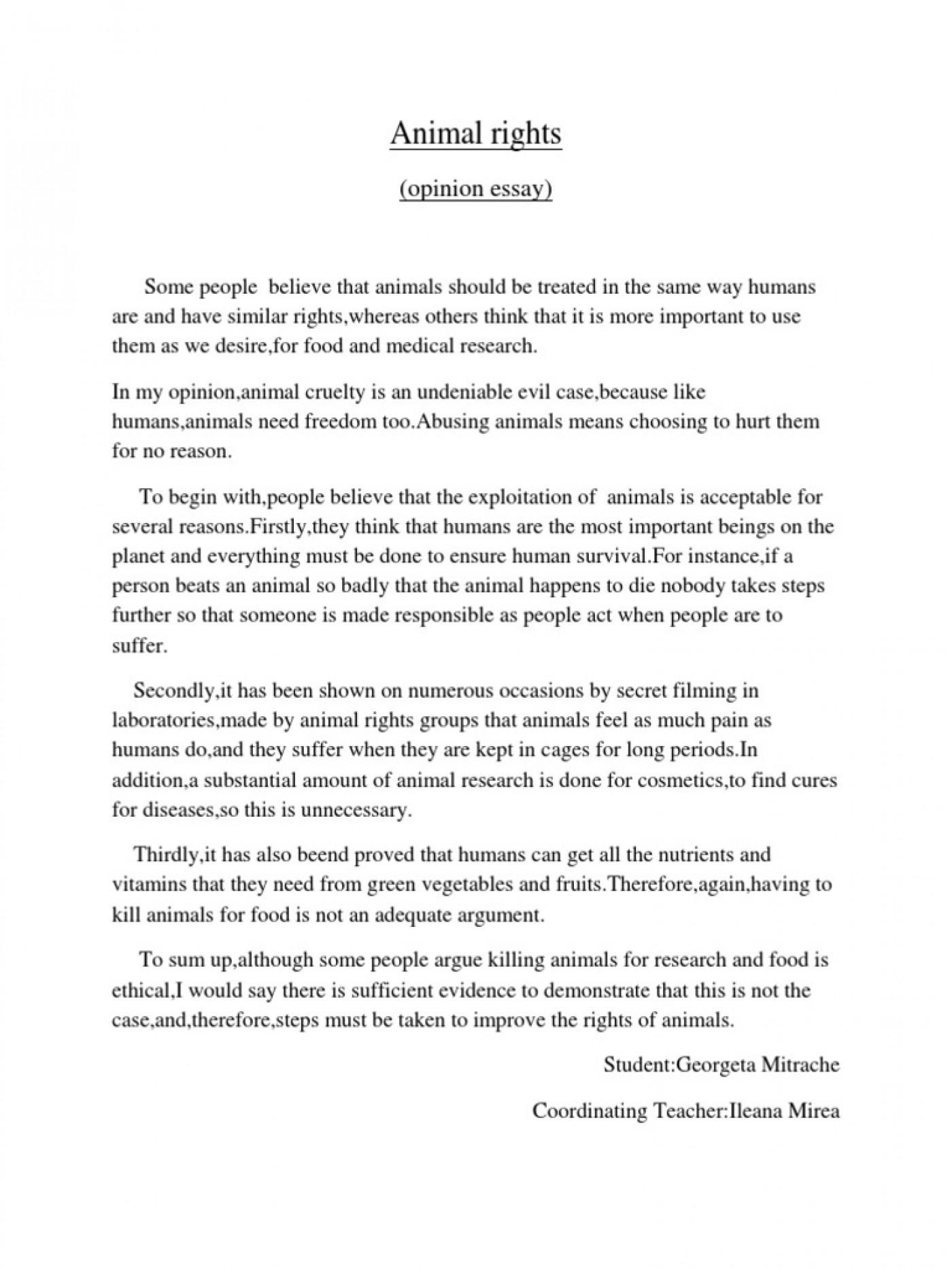 argumentative essay animal rights