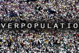 022 Cause And Effect Of Overpopulation Essay Remarkable