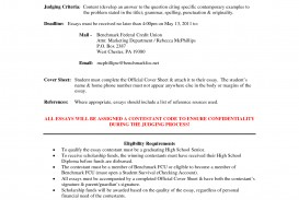 022 Essay Example Scholarship Stunning Sample Financial Need Samples For College Students