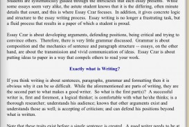 022 Essay Example Screen1024x1024 Funny Singular Topics Question Paper In Hindi For Grade 7