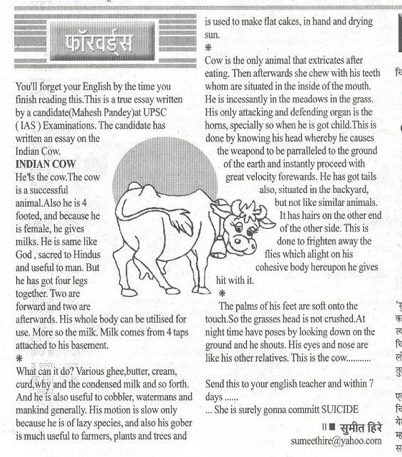 022 Essay On Love For Animals In Hindi Example Fascinating Towards And Birds 1400
