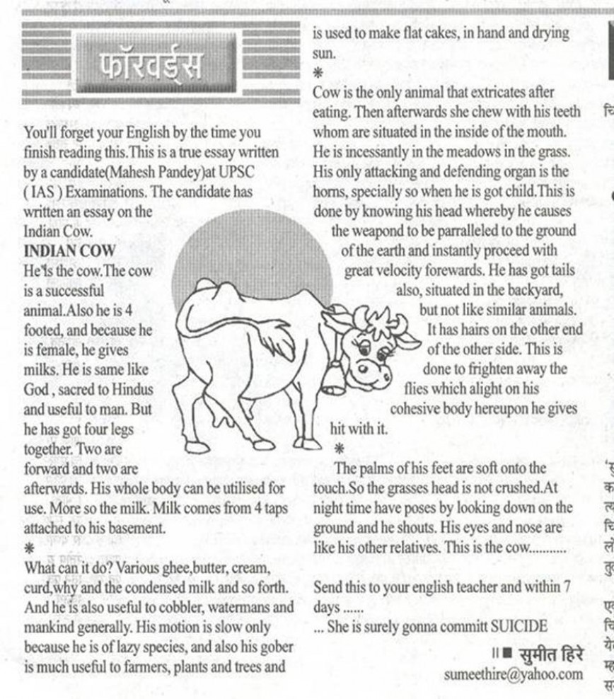 022 Essay On Love For Animals In Hindi Example Fascinating Towards And Birds 868