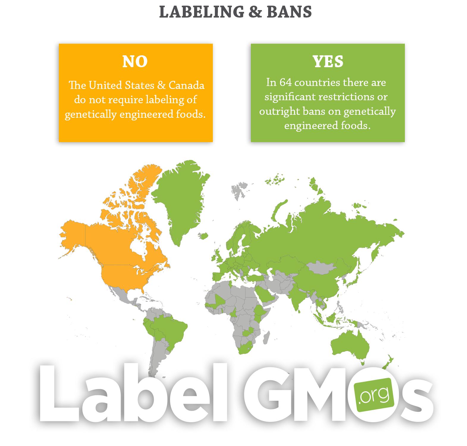 Genetically modified organism persuasive essay