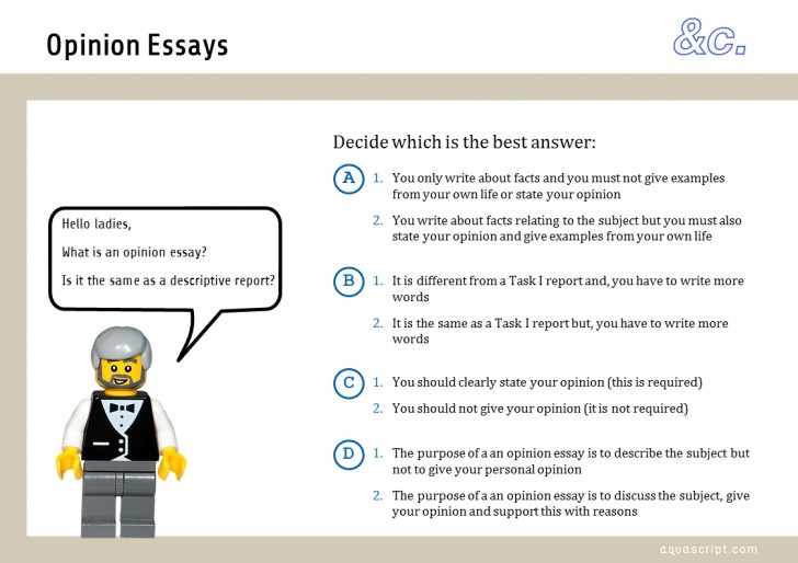 023 Cause And Effect Essays Final Exam Practice Opinion Amazing Essay Examples Writing Pdf Middle School 728