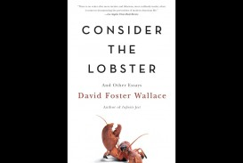 023 Essay Example David Foster Wallace Essays Formidable Amazon And The Long Thing New On Novels Cruise Ship