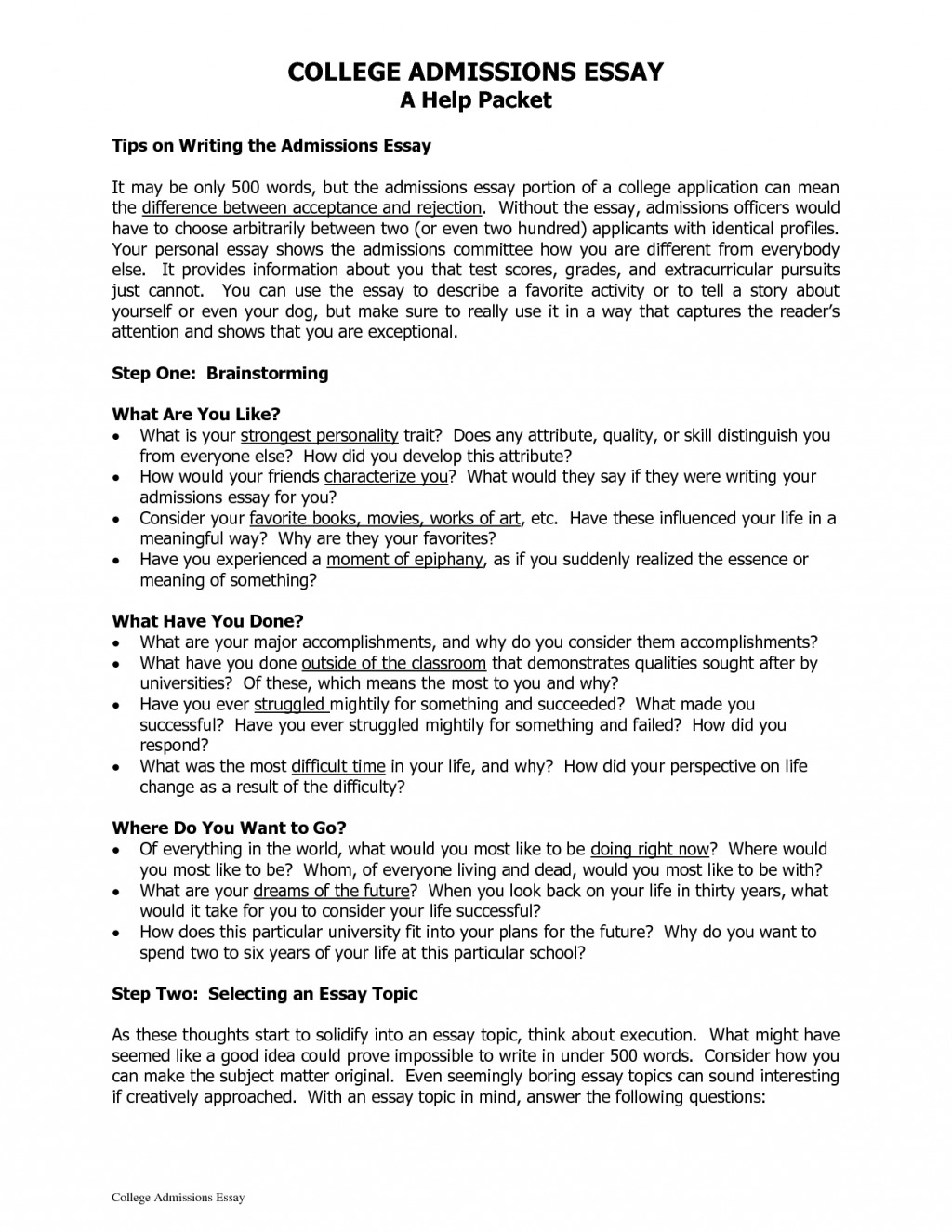023 Essay Example Top Topics For Unbelievable 10 College Large