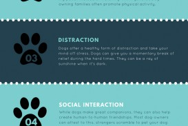 023 Why Should We Love Animals Essay Staggering I