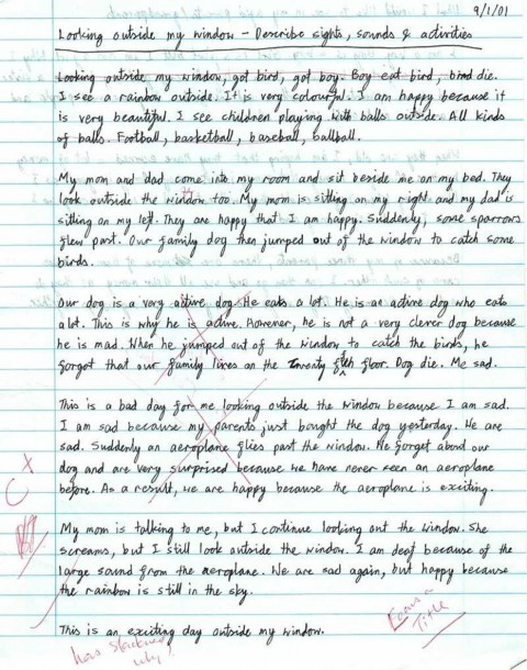 024 Memories Essay Example Sensational Paper Introduction 480