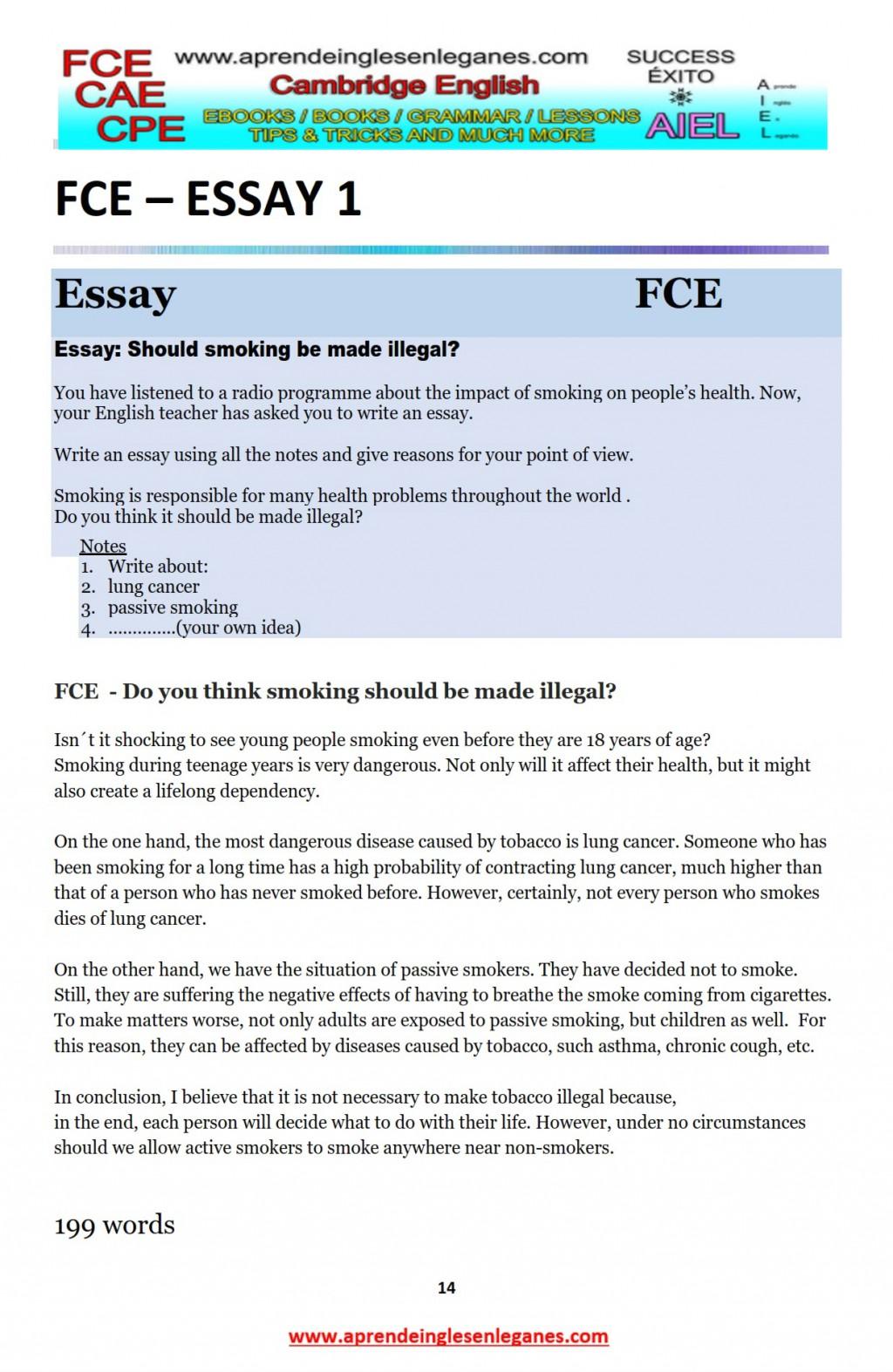 026 Essay Example Frightening Marvelous Essays Review Uk Large