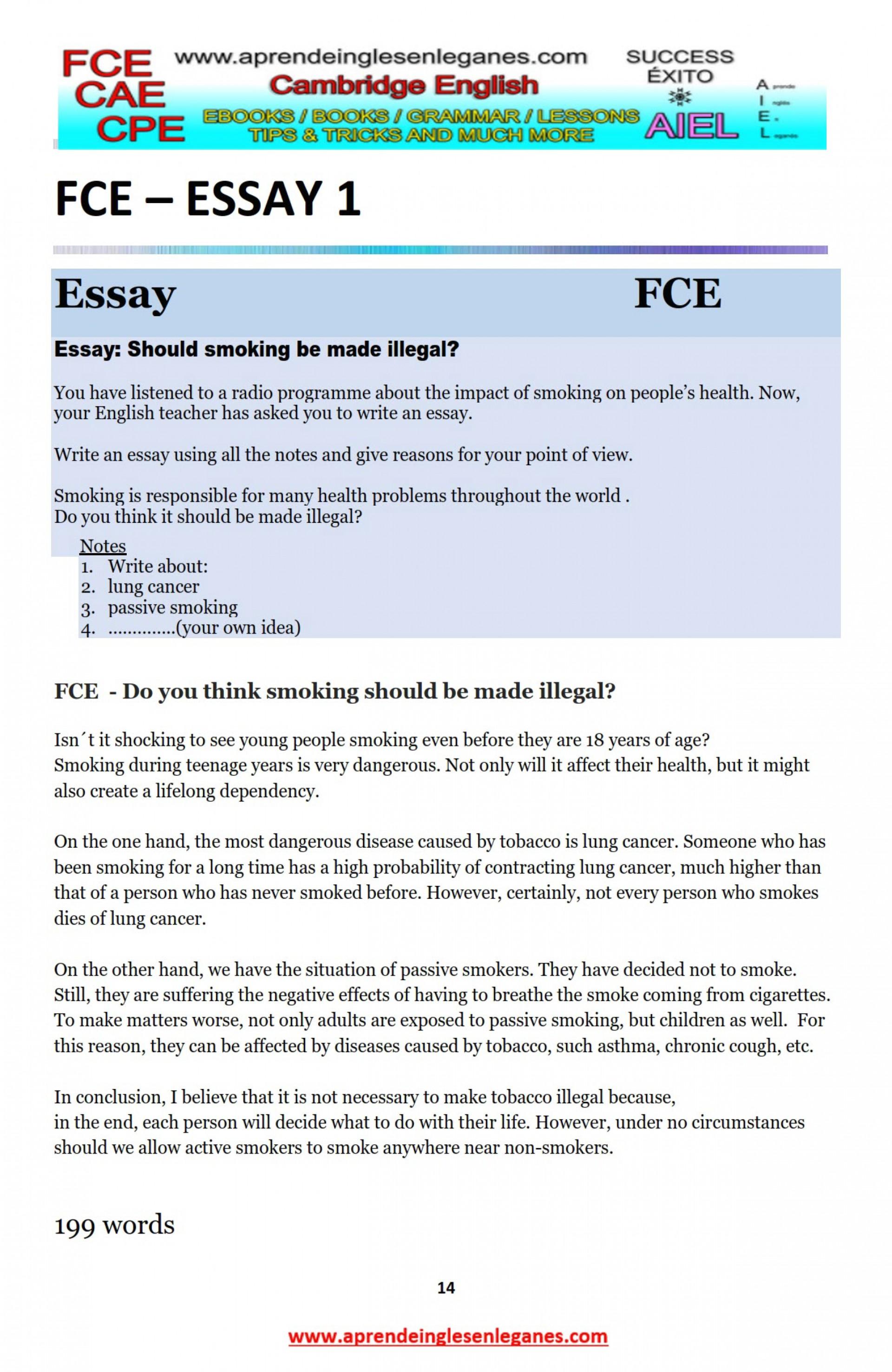 026 Essay Example Frightening Marvelous Essays Uk English 1920