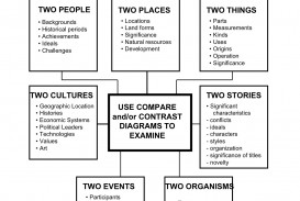 026 Essay Example Example1 Compare And Contrast Graphic Wondrous Organizer Middle School