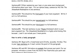 027 008010102 1 Opinion Essay Magnificent Prompts 6th Grade Examples 3rd