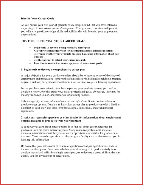 027 Educational And Career Goals Essay Example Goal Examples Unique Sample On Awesome Plans For Business Future 480