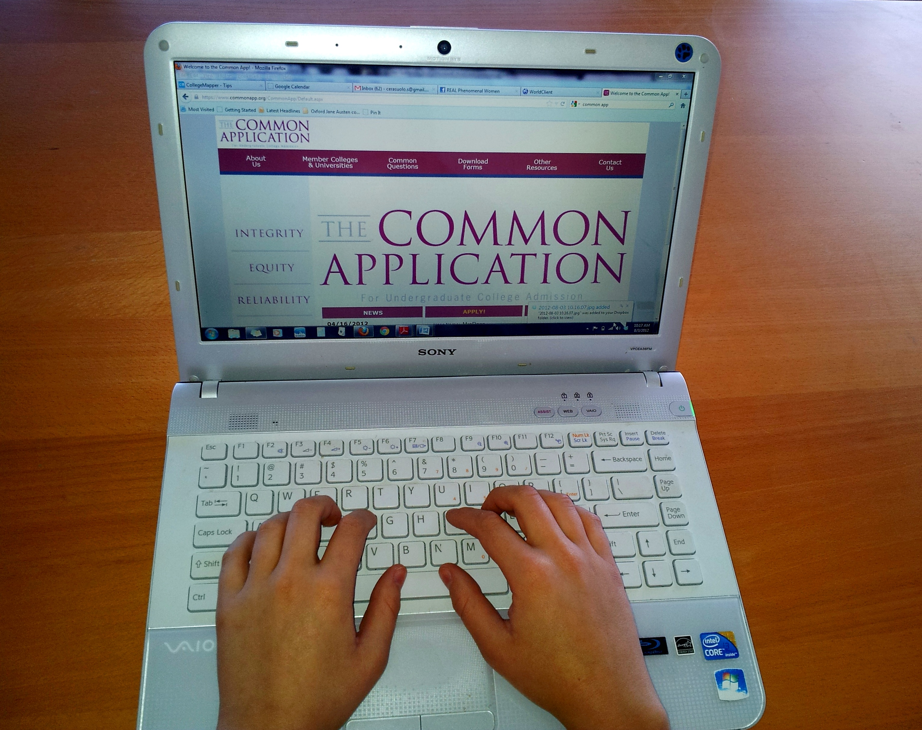027 Essay Example Commonapp1 Best Common App Magnificent Essays 2018 Ivy League New York Times Full