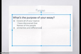 027 Essay Example Compare And Contrast Structure Stupendous Ppt Format Outline