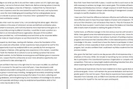 028 Essay Example Future Goal Examples Career Goals Nursing Writing So Stirring Pdf