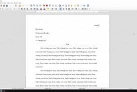 029 Essay Example Mla Format Essays Magnificent Persuasive Outline 2017